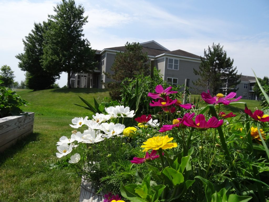 Flowers Archives Prestwick Chase At Saratoga Senior Living
